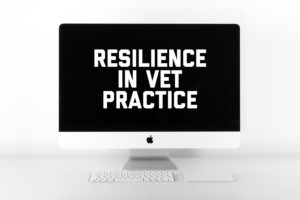 5 ways to boost workplace resilience in veterinary practice